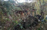 Baum auf Haus in Prüfing
